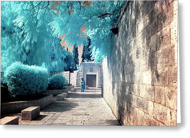 On A Walk Greeting Cards - A Walk On Mount Zion Greeting Card by John Rizzuto