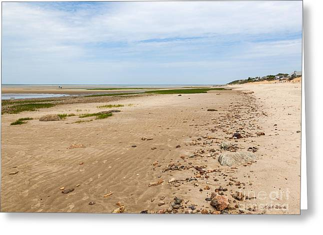 On A Walk Greeting Cards - A Walk on the Beach Greeting Card by Michelle Wiarda