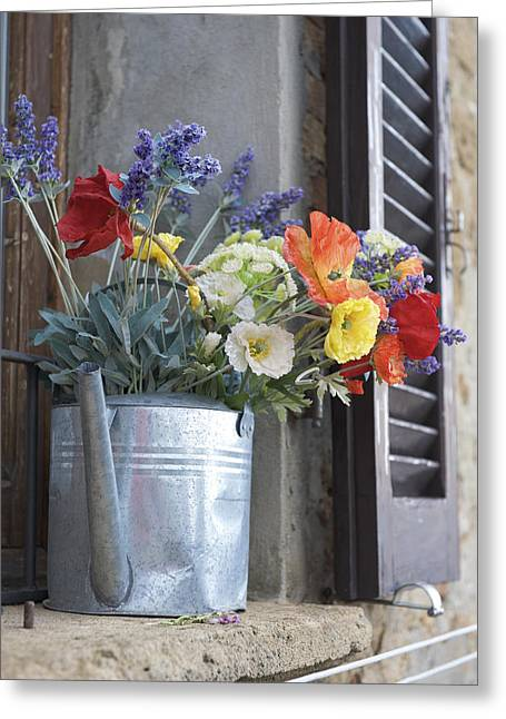 Window Of Life Greeting Cards - A Water Pitcher Holding Flowers Greeting Card by Keenpress