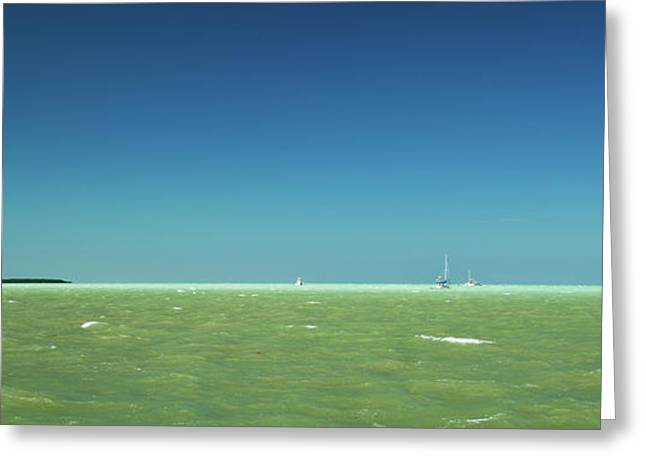 White Caps Greeting Cards - A Windy Day on the Bay Islamorada Florida Greeting Card by Michelle Wiarda