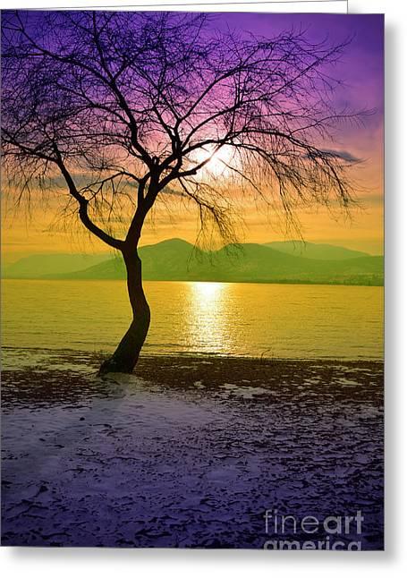 Naramata Greeting Cards - A Winter Paradise Greeting Card by Tara Turner