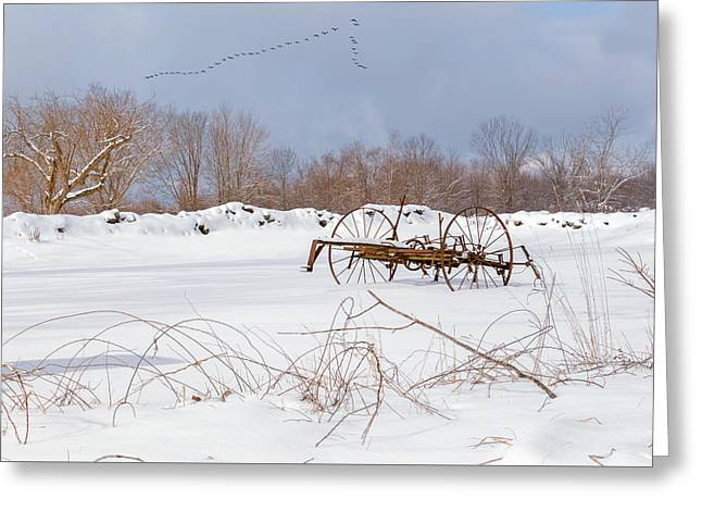 A Winters Morning 2016 Greeting Card by Bill Wakeley