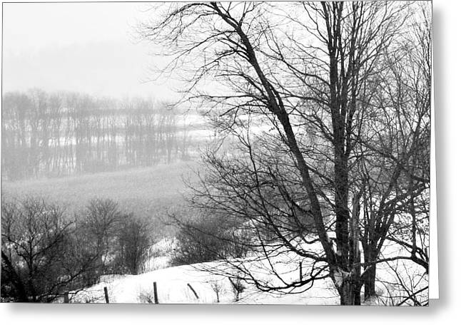Snow Tree Prints Greeting Cards - A Wintry Day Greeting Card by Gerlinde Keating - Keating Associates Inc