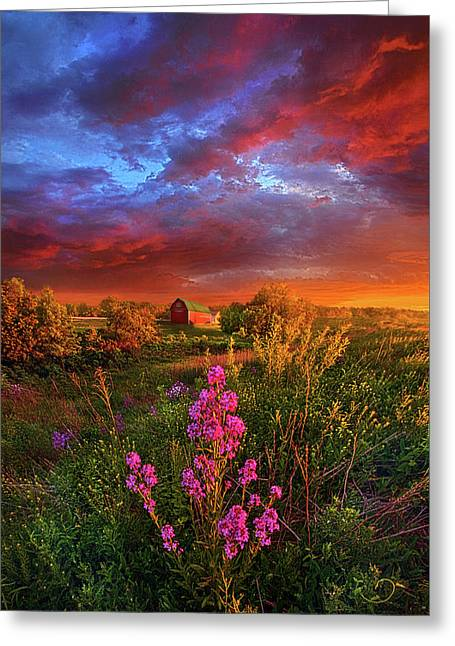 A Wisconsin Story Greeting Card by Phil Koch