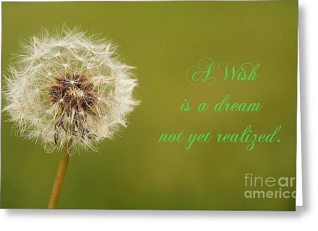 Wishes Greeting Cards - A Wish Greeting Card by Traci Law