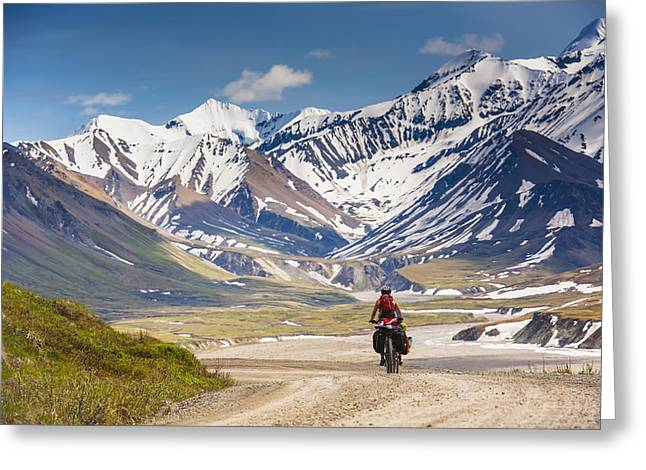 Gravel Road Greeting Cards - A Woman Bicycle Touring In Denali Greeting Card by Michael Jones