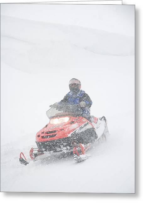 Snowmobile Greeting Cards - A Woman Drives Along On A Snowmobile Greeting Card by Taylor S. Kennedy
