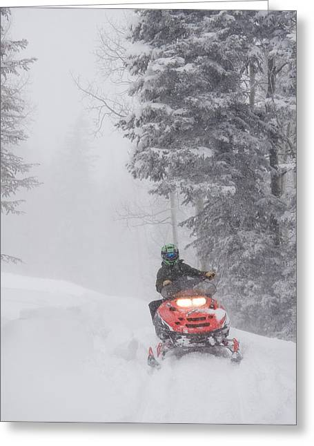 Snowmobile Greeting Cards - A Woman Speeds Along On A Snowmobile Greeting Card by Taylor S. Kennedy