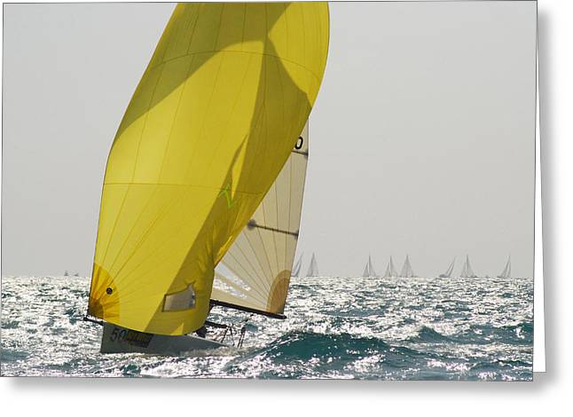 Yellow Sailboats Greeting Cards - A Yellow Spinnaker Is Lit Greeting Card by Hibberd, Shannon