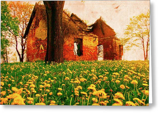 Abandoned Beauty Greeting Card by Emily Allred