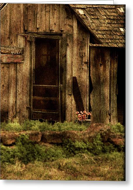 Dilapidated Houses Greeting Cards - Abandoned Greeting Card by Bonnie Bruno