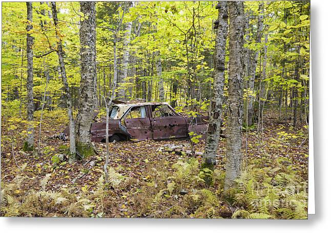 Abandoned Car- Woodstock New Hampshire Greeting Card by Erin Paul Donovan