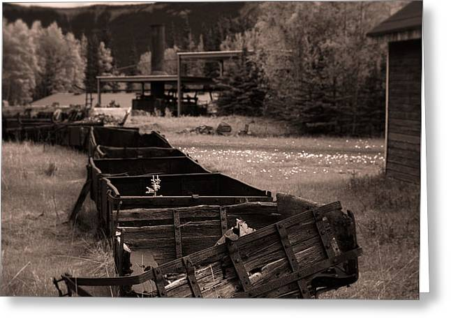 Abandoned Cars and Scattered Nuggets Greeting Card by Royce Howland