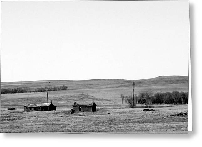 Ranch Photographs Greeting Cards - Abandoned Homestead Greeting Card by Tam Graff
