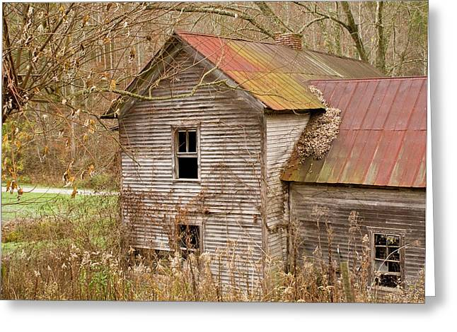 West Fork Greeting Cards - Abandoned house with colorful roof Greeting Card by Douglas Barnett