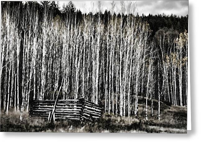 Log Cabins Greeting Cards - Abandoned Part 1 Greeting Card by Monte Arnold