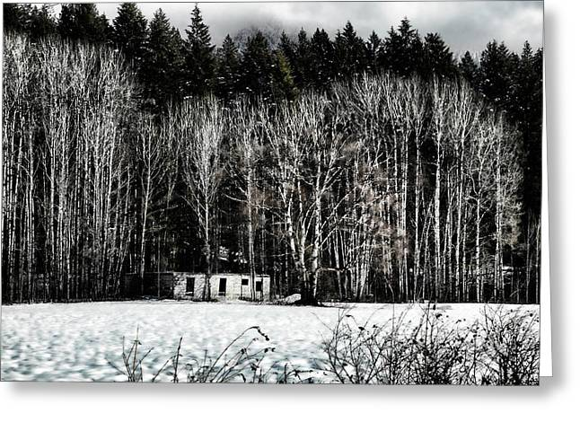 Log Homes Greeting Cards - Abandoned Part 2 Greeting Card by Monte Arnold