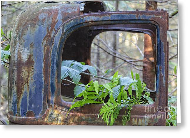 Abandoned Rusted Car - New Hampshire Forest Greeting Card by Erin Paul Donovan