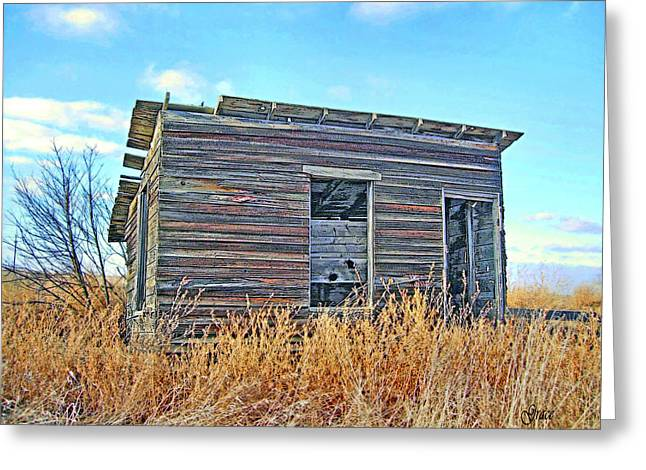 Shack Mixed Media Greeting Cards - Abandoned Shack Greeting Card by Julie  Grace