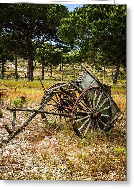 Farmers Field Greeting Cards - Abandoned Wooden Cart I Greeting Card by Marco Oliveira