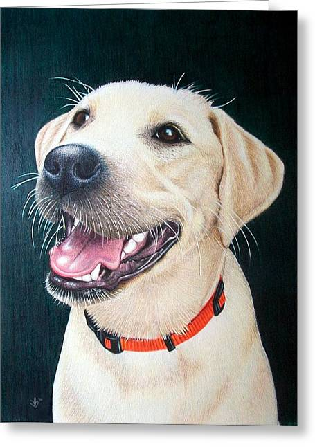 Puppies Drawings Greeting Cards - Abbey Greeting Card by Danielle R T Haney