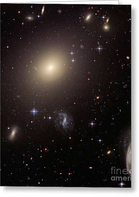 Hubble Space Telescope Greeting Cards - Abell S0740 Galaxies Greeting Card by Nasa