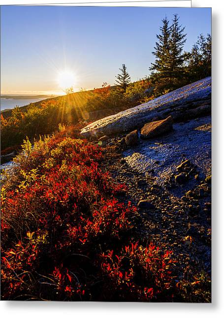 Above Bar Harbor Greeting Card by Chad Dutson