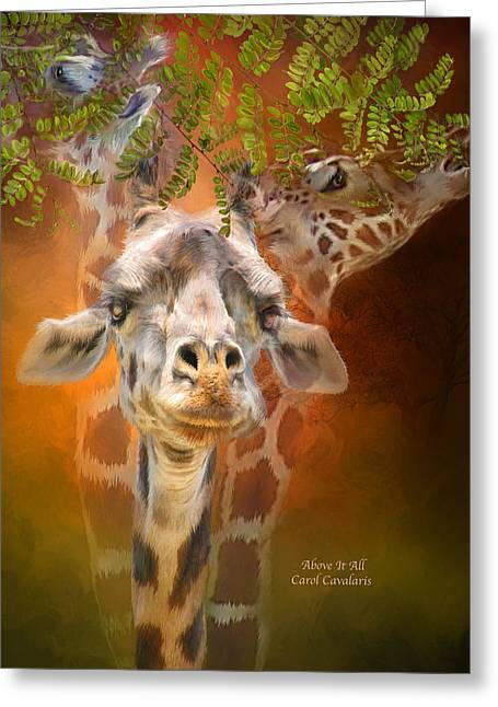 Above It All Greeting Card by Carol Cavalaris
