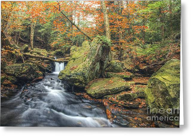 Tonemapping Greeting Cards - Above Mohawk Falls October 2012 Greeting Card by Aaron Campbell