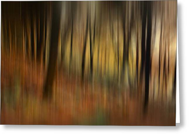 Abstract Nature Greeting Cards - Abstract Autumn Forest Greeting Card by Rod McLean
