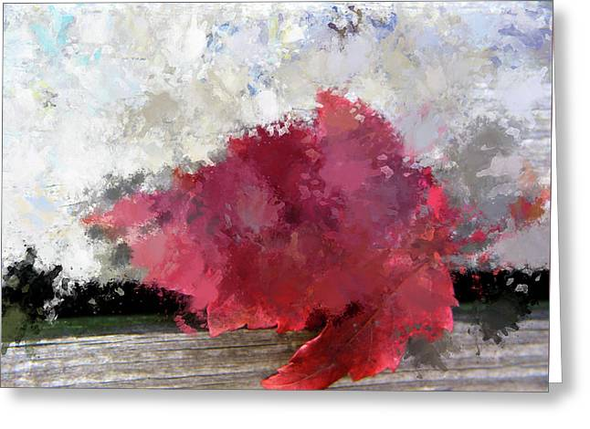 Abstract Bright Red Leaf Greeting Card by Terry Davis