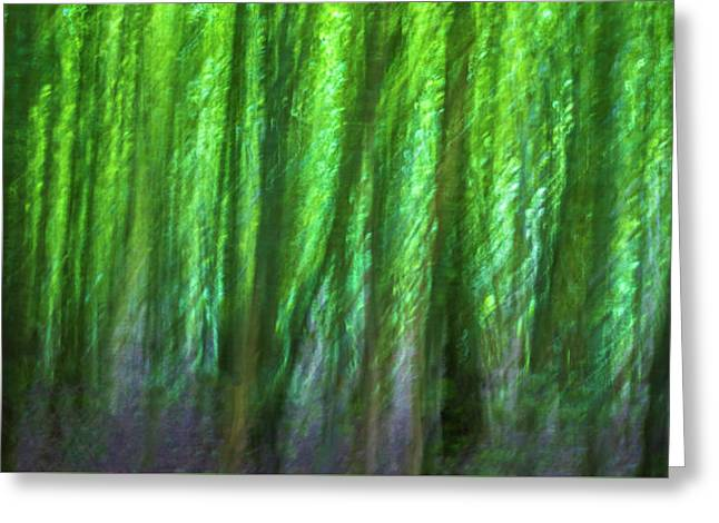 Abstract Forest Greeting Card by Martin Newman