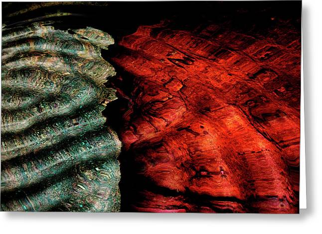 Cracked Stone Greeting Cards - Abstract from Stone Wall Greeting Card by Cynthia Dickinson
