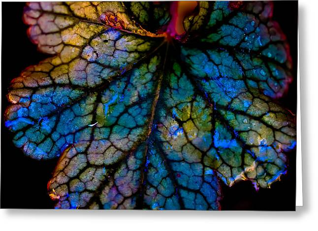 Stained Glass 3 Greeting Cards - Abstract Leaf Greeting Card by Mitch Shindelbower