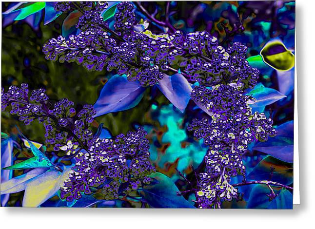 Abstract Digital Photographs Greeting Cards - Abstract Lilacs  Greeting Card by Julie Wooden