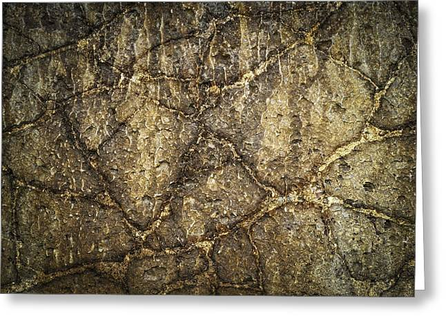 Industrial Background Greeting Cards - Abstract Old Concrete Panel Greeting Card by Jozef Jankola