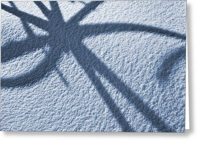 Snowy Day Greeting Cards - Abstract Shadow Pattern on Snow Blue Tone Greeting Card by Donald  Erickson