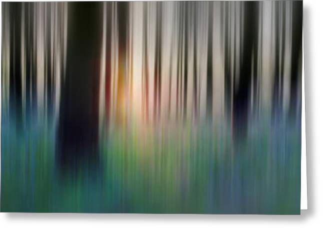 Abstract Nature Greeting Cards - Abstract Spring Forest Greeting Card by Rod McLean