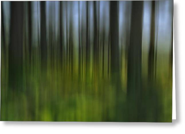 Summer Landscape Greeting Cards - Abstract Summer Forest Greeting Card by Rod McLean