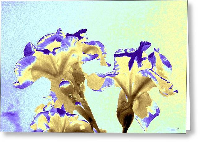 Abstract Watercolor Irises  Greeting Card by Will Borden