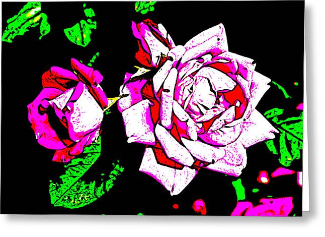 Virginia Artist Greeting Cards - Abstract White Red and Pink Roses Greeting Card by Virginia Artist