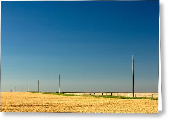 Abundant Plains Greeting Card by Todd Klassy