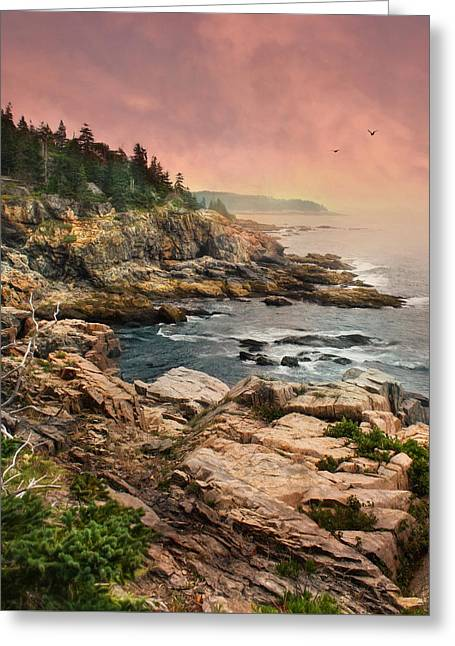Acadia National Park Greeting Card by Lori Deiter