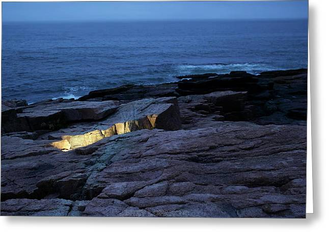 Acadia Nocturnes Greeting Card by Jerry LoFaro