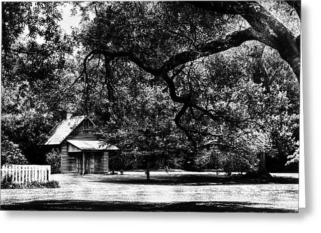 Martinville Greeting Cards - Acadian Farmstead 1 Greeting Card by Liz Keeler
