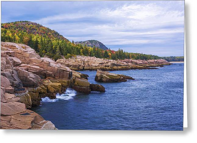 Acadia's Coast Greeting Card by Chad Dutson