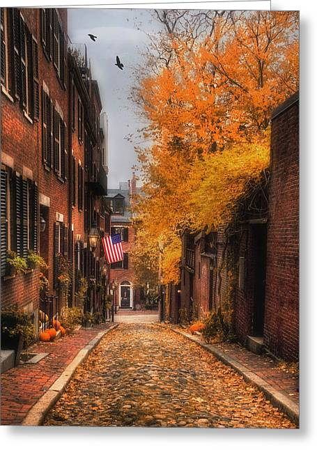 Acorn St. Greeting Card by Joann Vitali