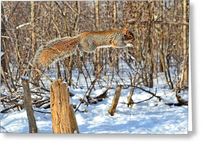 Acrobat's Leap Greeting Card by Asbed Iskedjian