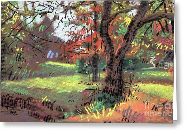 Autumn Pastels Greeting Cards - Across the Creek Greeting Card by Donald Maier