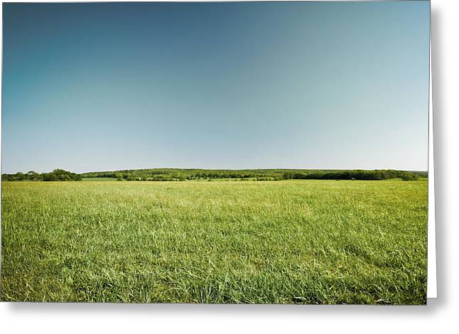 (c) 2010 Photographs Greeting Cards - Across the Field Greeting Card by Ryan Kelly